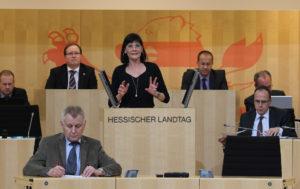 Eva Goldbach / Plenarsaal des Hessischen Landtags